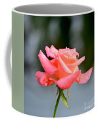 A Peachy Pink Delight Coffee Mug