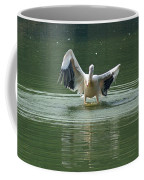 A Pelican Drying Its Wings After Landing In The Lake Inside Delhi Zoo Coffee Mug