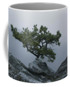 A Pine Tree Clings To A Rocky Ridge Coffee Mug