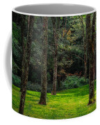 A Place To Unwind Coffee Mug by Scott Hervieux