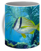 A Porkfish Swims By Sea Plumes Coffee Mug by Terry Moore