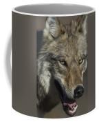 A Portrait Of A Gray Wolf Coffee Mug