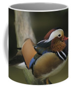 A Portrait Of A Mandarin Duck Coffee Mug