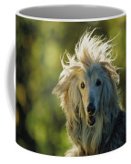 A Portrait Of An Afghan Hound Coffee Mug