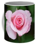A Pretty Pink Rose Coffee Mug