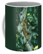 A Proboscis Monkey Coffee Mug