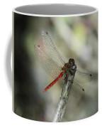 A Red Dragonfly Coffee Mug