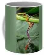 A Red-eyed Tree Frog, Agalychnis Coffee Mug