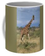 A Reticulated Giraffe On A Samburu Coffee Mug
