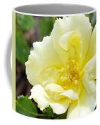 A Rose Is A Rose Rrp Coffee Mug