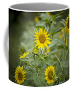 A Row Of Bright Yellow Sunflowers Grow Coffee Mug by Hannele Lahti