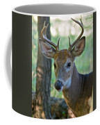 A Seven Point Profile 9752 Coffee Mug