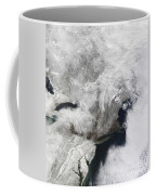 A Severe Winter Storm Coffee Mug