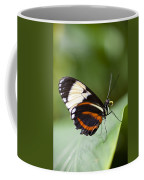 A Side View Of A Butterfly Coffee Mug by Taylor S. Kennedy