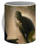 A Silhouetted Man Cooling Off In Water Coffee Mug