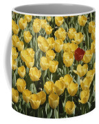 A Single Red Tulip Among Yellow Tulips Coffee Mug by Ted Spiegel
