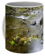 A Small Dam Of Golden Leaves  Coffee Mug