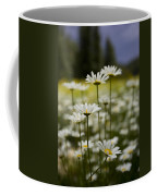 A Small Group Of Daisies Stands Coffee Mug