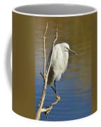 A Snowy Egret  Coffee Mug