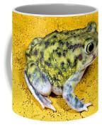 A Spadefoot Toad Coffee Mug