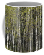 A Stand Of Aspen Trees At Wolf Creek Coffee Mug by Rich Reid