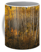 A Stand Of Aspen Trees Displaying Coffee Mug