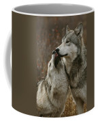 A Submissive Beta Gray Wolf, Canis Coffee Mug