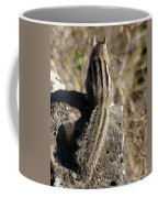 A Tail Untold Coffee Mug