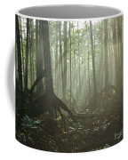 A Tangle Of Buttressed Roots In A Misty Coffee Mug by Tim Laman