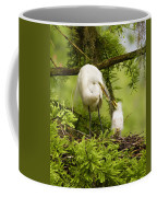A Tender Moment - Great Egret And Chick Coffee Mug
