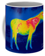 A Thermogram Of A Horse Coffee Mug