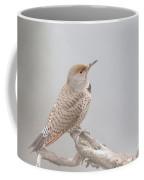 A Thrush Posing  Coffee Mug