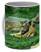 A Tiger's Gaze Coffee Mug by Paul Ward