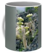 A Tiny Lynx Cub Felis Lynx Peeks Coffee Mug