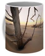 A Twilight View Of Drift Wood Coffee Mug