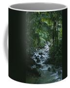 A View Of A Tropical Stream In El Coffee Mug