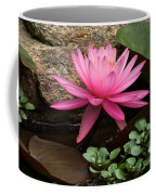 A Waterlily's Grace Coffee Mug