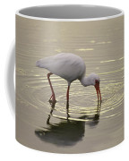A White Ibis Probes The Mud Coffee Mug