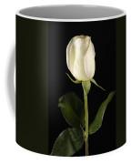 A White Rose Rosaceae Coffee Mug