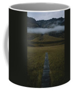 A Wooden Pathway Leads To An Coffee Mug by Randy Olson