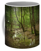 A Woodland Stream In Cades Cove No.472 Coffee Mug