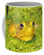 A Yellow Bullfrog Coffee Mug