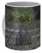 A Young Mangrove Tree Coffee Mug by Klaus Nigge