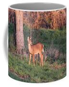 Aah Baby - Deer Coffee Mug