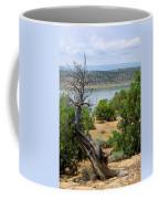 Abiquiu Lake New Mexico 2 Coffee Mug
