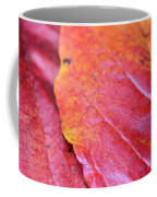 Abstract Dogwood In Autumn Coffee Mug