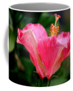 Abundantly Pink Coffee Mug