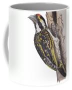 Acacia Pied Barbet Coffee Mug