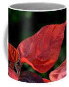 Acalypha Coffee Mug