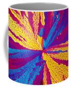 Acetylcholine Coffee Mug